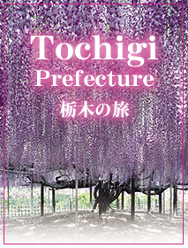 Tochigi Prefecture, a History, Nature and Gastronomy Paradise
