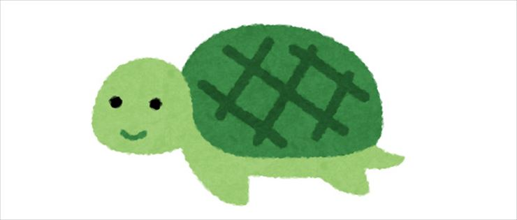 turtle with a shell pattern resembling the Big Dipper