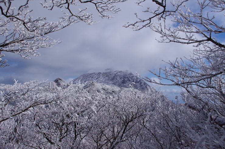 Rime Ice in Unzen